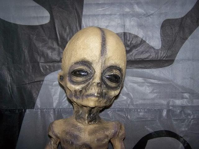 Alien from Kmart