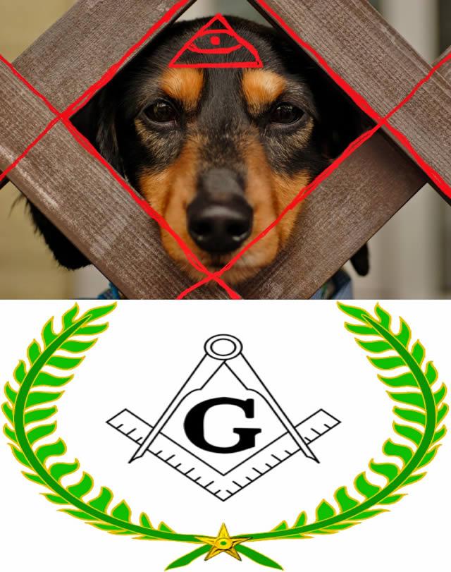 Free Mason Dog